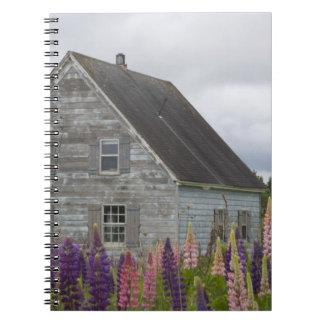 North America, Canada, Prince Edward Island, Notebooks