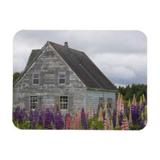 North America, Canada, Prince Edward Island, Rectangular Photo Magnet