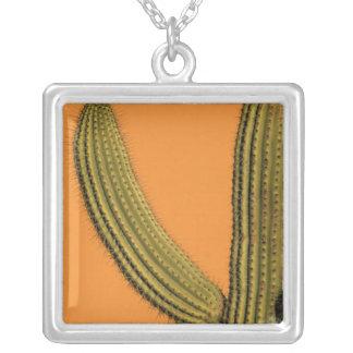 North America, Mexico, Baja California, Cabo Square Pendant Necklace