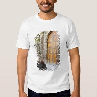North America, Mexico, Guanajuato state, San 3 Tee Shirt
