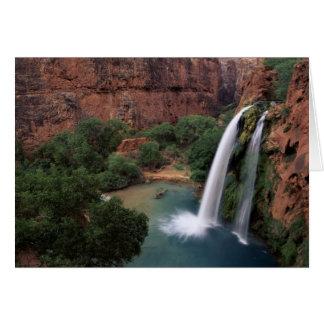 North America, U.S.A., Arizona, Havasu Canyon, Card