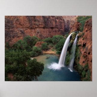 North America, U.S.A., Arizona, Havasu Canyon, Poster