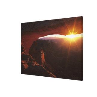 North America, U.S.A., Utah, Canyonlands Stretched Canvas Print