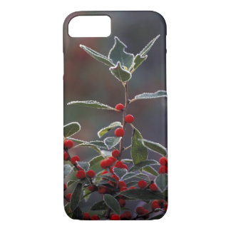 North America, United States, New England. Holly 2 iPhone 7 Case