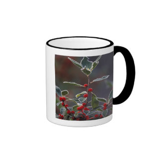 North America, United States, New England. Holly 2 Coffee Mugs