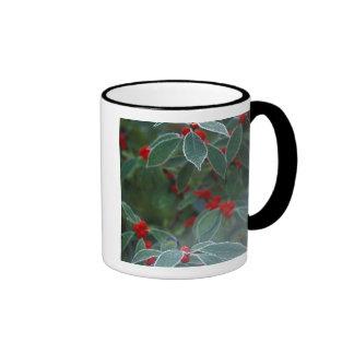 North America, United States, New England. Holly Coffee Mugs