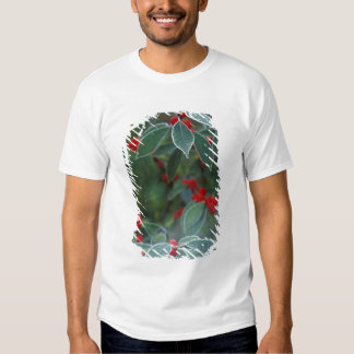 North America, United States, New England. Holly Tee Shirts