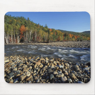 North America, US, NH, A cobble beach on the Mouse Pad