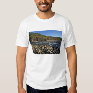 North America, US, NH, A cobble beach on the T Shirt