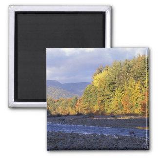 North America, US, NH, Saco River. Cobble Square Magnet