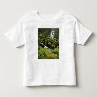 North America, USA, Alaska. A waterfall and Tee Shirt