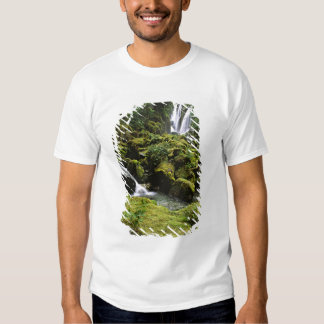 North America, USA, Alaska. A waterfall and Tshirts