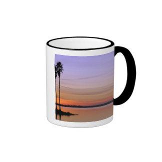 North America, USA, Florida, Mt. Dora, a trio Ringer Mug