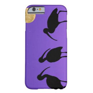 North America, USA, Florida, Mt. Dora, Barely There iPhone 6 Case