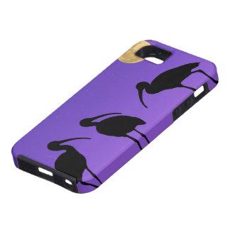 North America, USA, Florida, Mt. Dora, Case For The iPhone 5