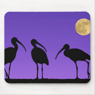 North America, USA, Florida, Mt. Dora, Mouse Pad
