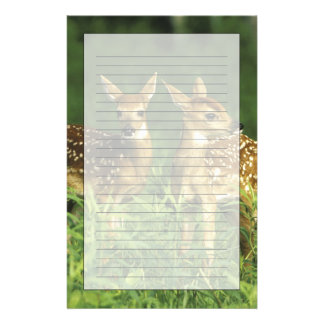 North America, USA, Minnesota. White-tailed 2 Personalized Stationery