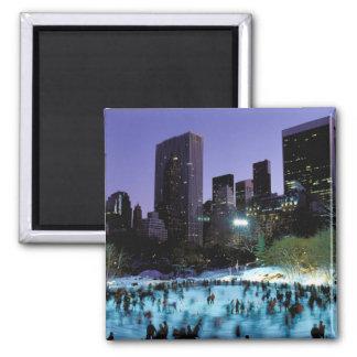 North America, USA, New York, New York City. 9 Magnet