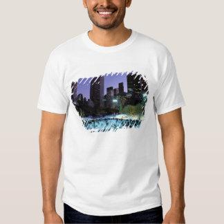 North America, USA, New York, New York City. 9 Tee Shirts