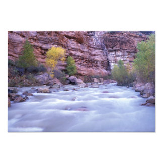 North America, USA, Utah, Zion National Park. 2 Photo Print