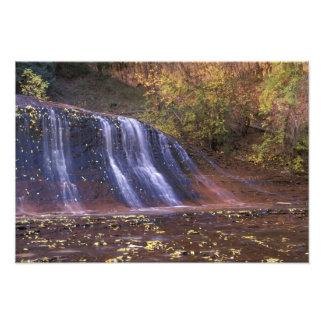 North America, USA, Utah, Zion National Park. Photographic Print
