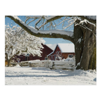 North America, USA, WA, Whidbey Island. 2 Postcard