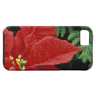 North America, USA, WA, Woodinville, Red iPhone 5 Case