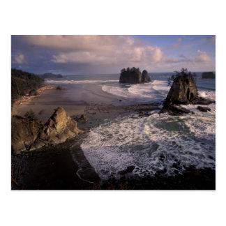 North America, USA, Washington, Olympic NP, Postcard