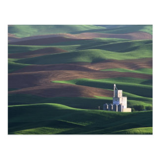 North America, USA, Washington, Palouse. The Postcard