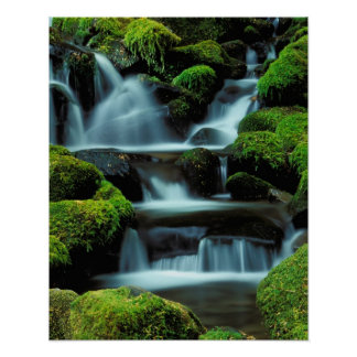 North America; USA; Washington, Sol Duc Cascade Poster