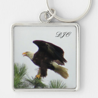 North American Bald Eagle Posing on Pine Tree Silver-Colored Square Key Ring