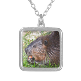 North American Beaver eating vegetable Silver Plated Necklace