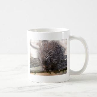 North American porcupine Coffee Mug