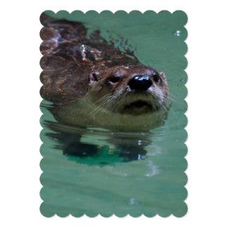 North American River Otter Invites