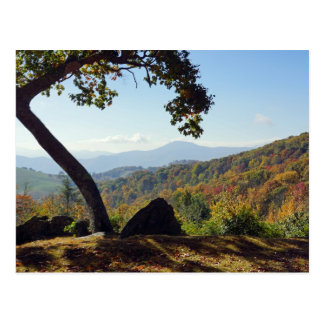 North Carolina Mountains Postcard