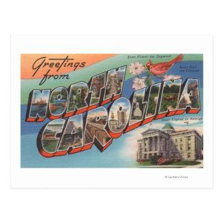 North Carolina (State Flower/Bird) Postcard