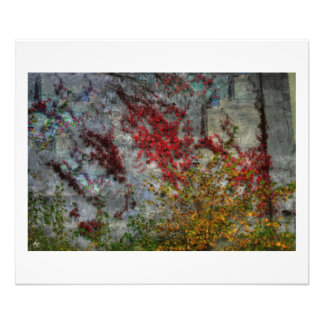 North Country Ode to Pollock  Open Edition Print Photo Art