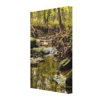 North Wears Creek Canvas Print