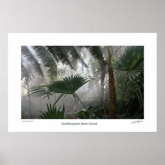 Northampton Rain Forest I Poster