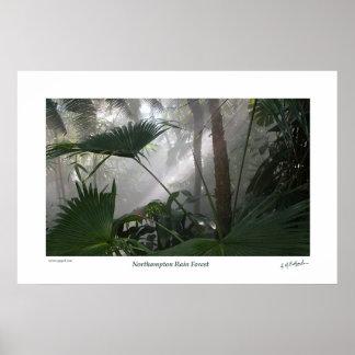 Northampton Rain Forest II Poster
