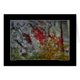 Northcountry Ode to Pollock Card