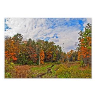 Northeast  Autumn Photo Art