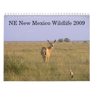 Northeastern New Mexico Wildlife 2009 Calendar