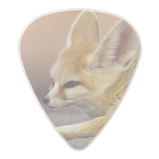Northern Africa. Fennec Fennecus zerda) Acetal Guitar Pick