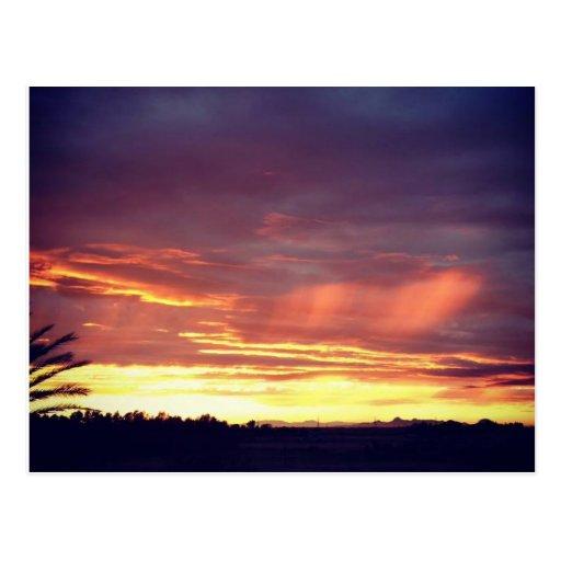 Northern California Sunset Postcard