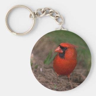Northern Cardinal 2 Key Ring