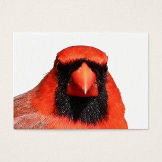 Northern Cardinal Business Card