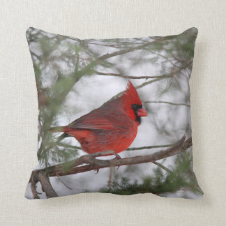 Northern cardinal cushion
