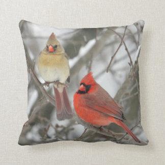 Northern Cardinal Cushion