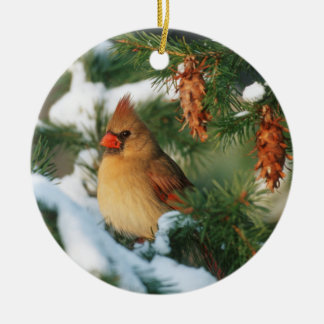 Northern Cardinal in tree, Illinois Ceramic Ornament